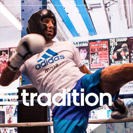 Picture of ADITRADITION adidas boxing